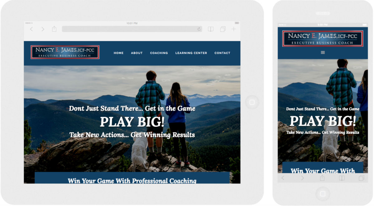 Nancy E James Executive Business Coach Workshop Web Design