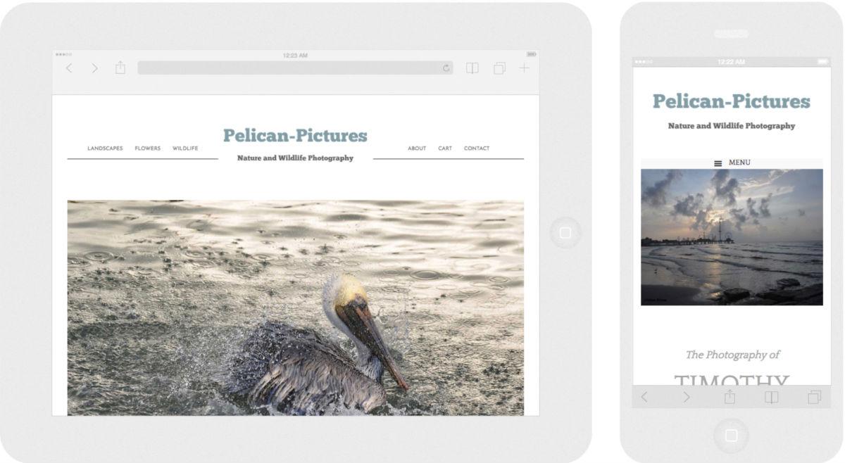 Pelican-Pictures